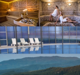 For Sale: Thriving Year-Round Mountain SPA Hotel In Bulgaria
